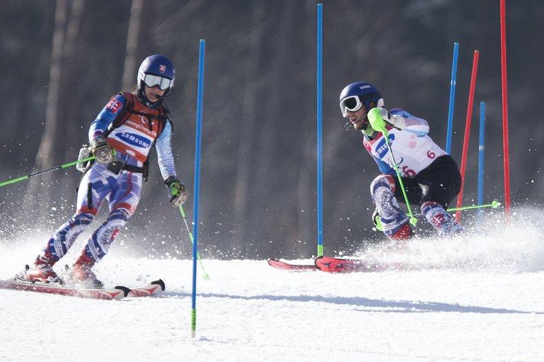 obrovský slalom