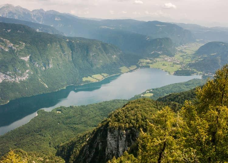 Vogel Slovinsko